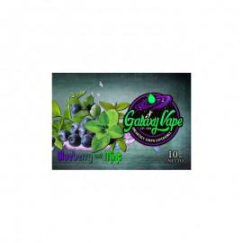 GALAXY VAPE Blueberry and Mint