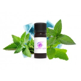 TWISTED FLAVORS Minthol Aroma Concentrato