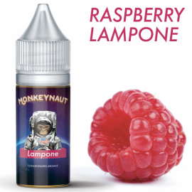 MONKEYNAUT Lampone Concentrato