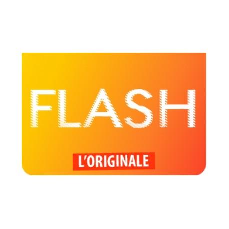 FLAVOUR ART Flash Concentrato